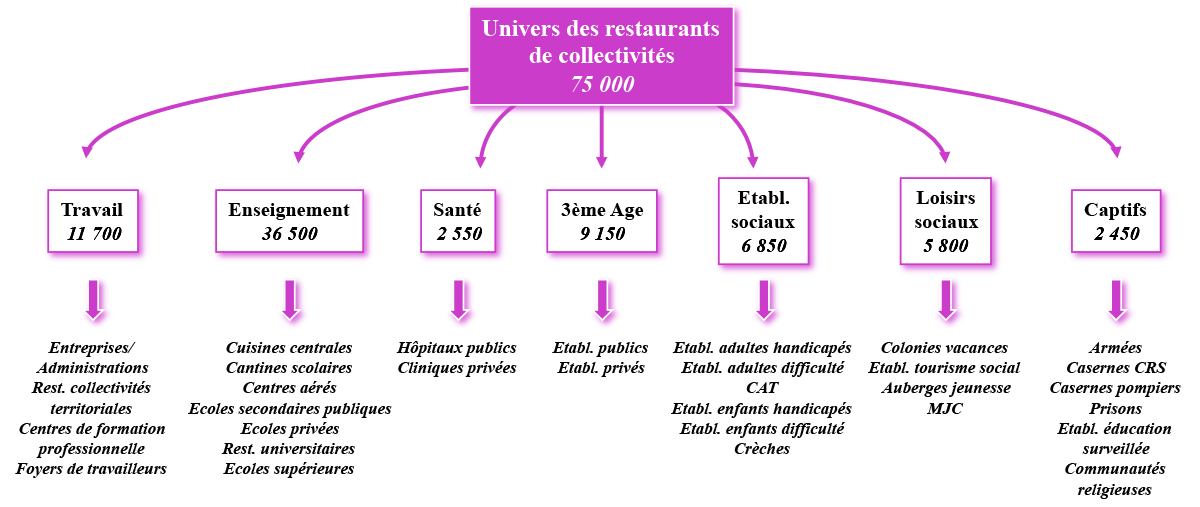 Base De Donnees Restaurant En France
