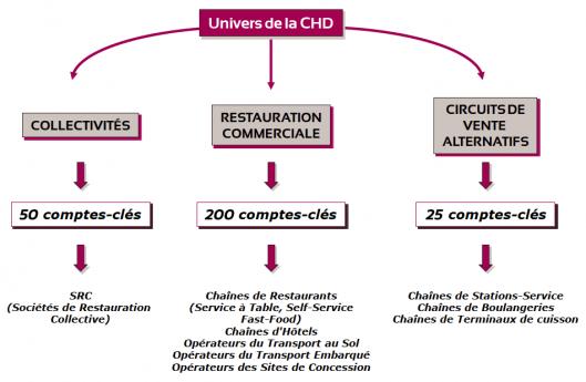 Univers de la CHD
